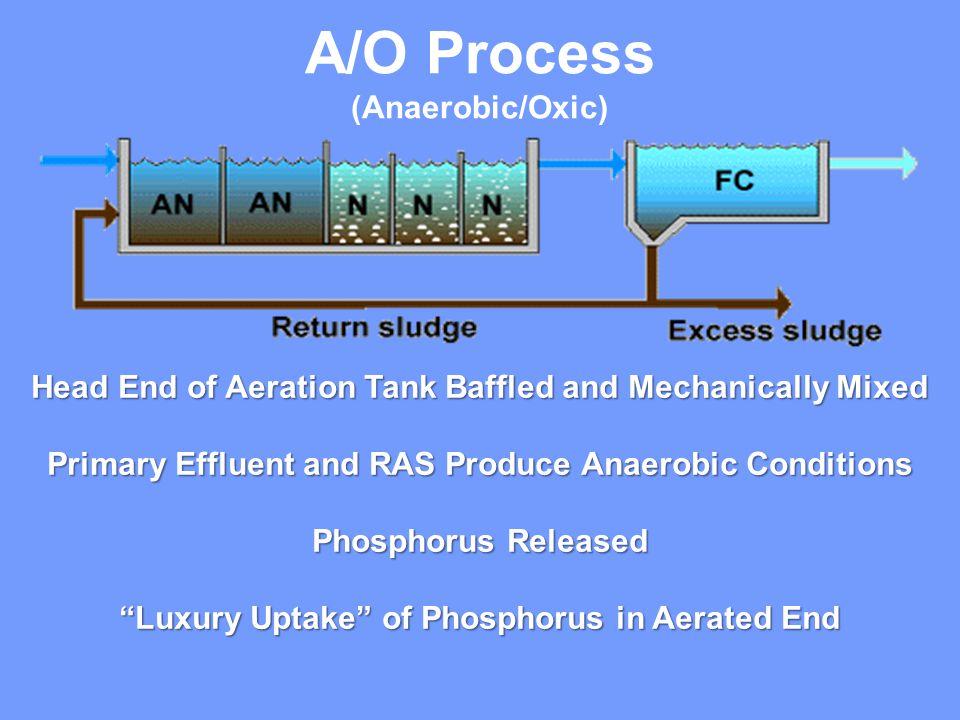 A/O Process (Anaerobic/Oxic)