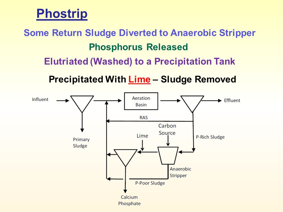 Phostrip Some Return Sludge Diverted to Anaerobic Stripper