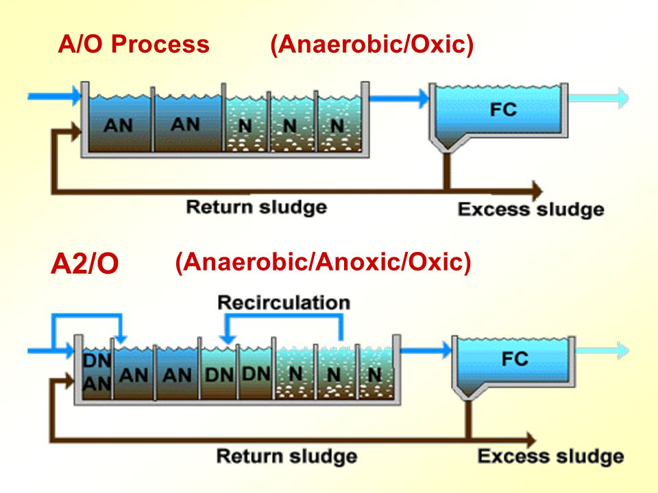A/O Process (Anaerobic/Oxic) A2/O (Anaerobic/Anoxic/Oxic)