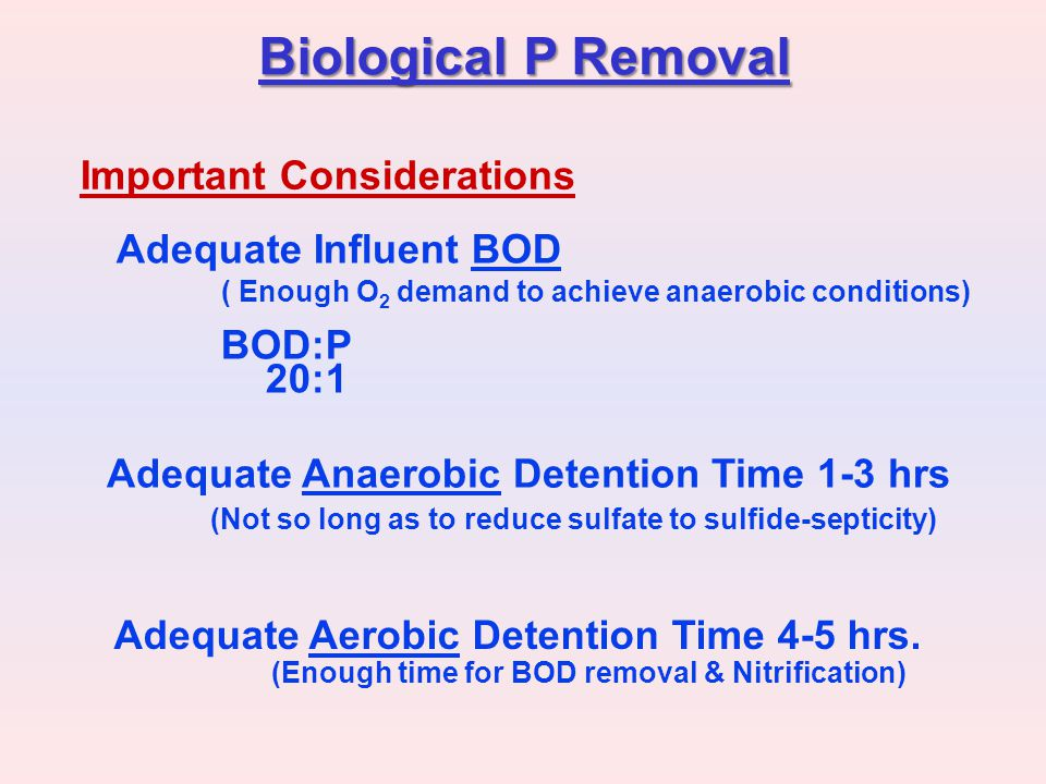 Biological P Removal Important Considerations Adequate Influent BOD