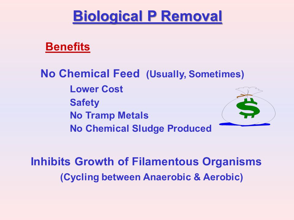 Biological P Removal Benefits No Chemical Feed (Usually, Sometimes)