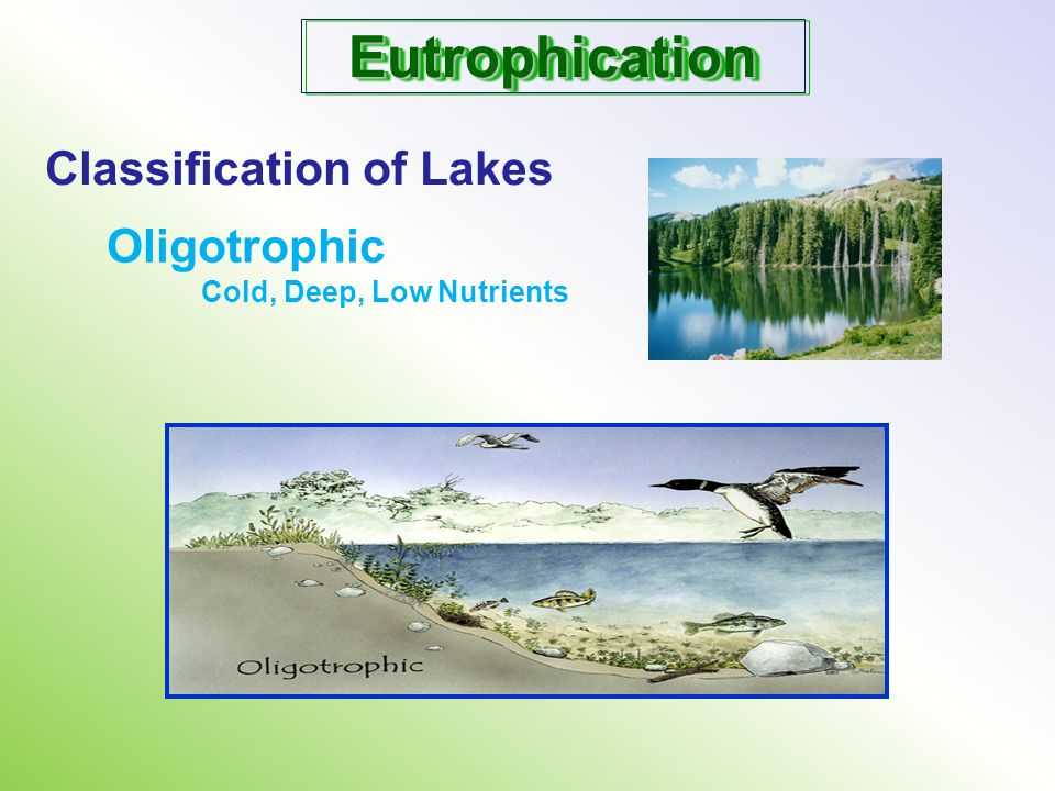 Eutrophication Classification of Lakes Oligotrophic