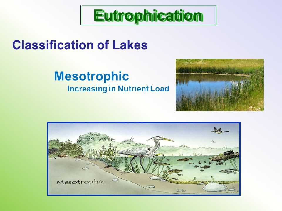 Eutrophication Classification of Lakes Mesotrophic