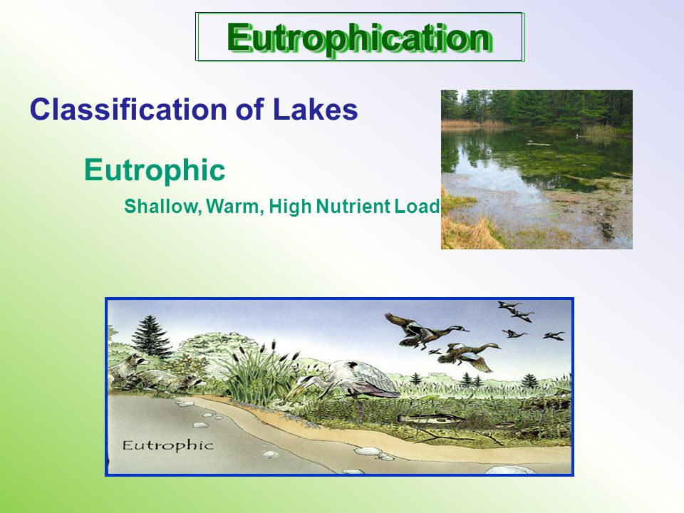 Eutrophication Classification of Lakes Eutrophic