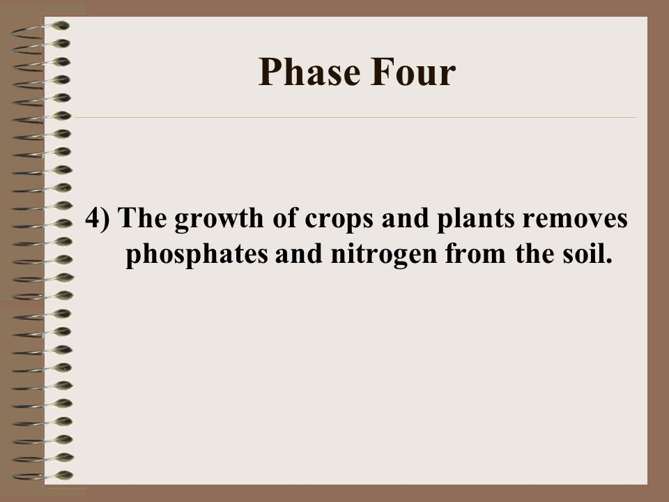 Phase Four 4) The growth of crops and plants removes phosphates and nitrogen from the soil.