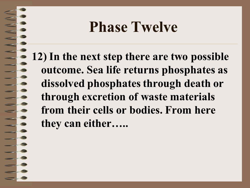 Phase Twelve