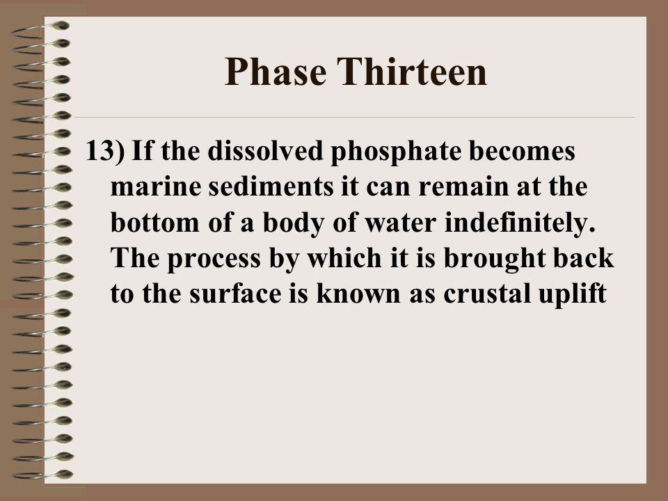 Phase Thirteen
