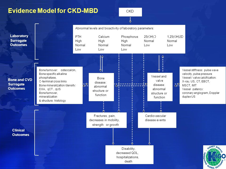 Evidence Model for CKD-MBD