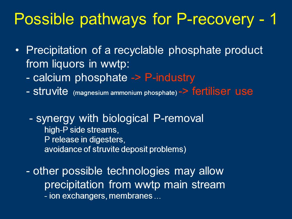 Possible pathways for P-recovery - 1