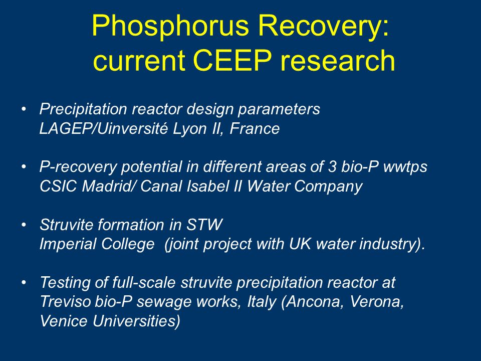 Phosphorus Recovery: current CEEP research