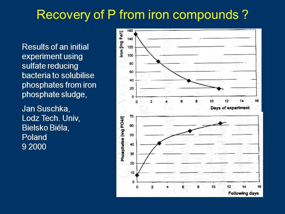 Recovery of P from iron compounds