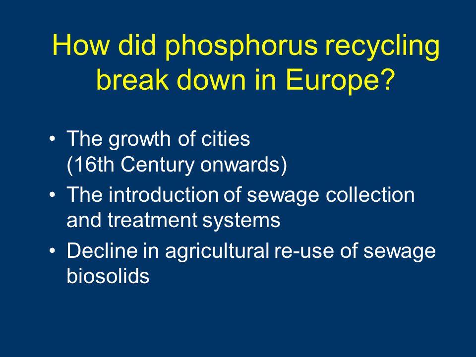 How did phosphorus recycling break down in Europe