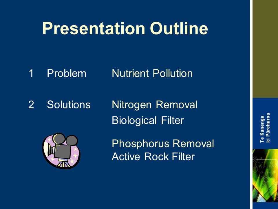Presentation Outline 1 Problem Nutrient Pollution