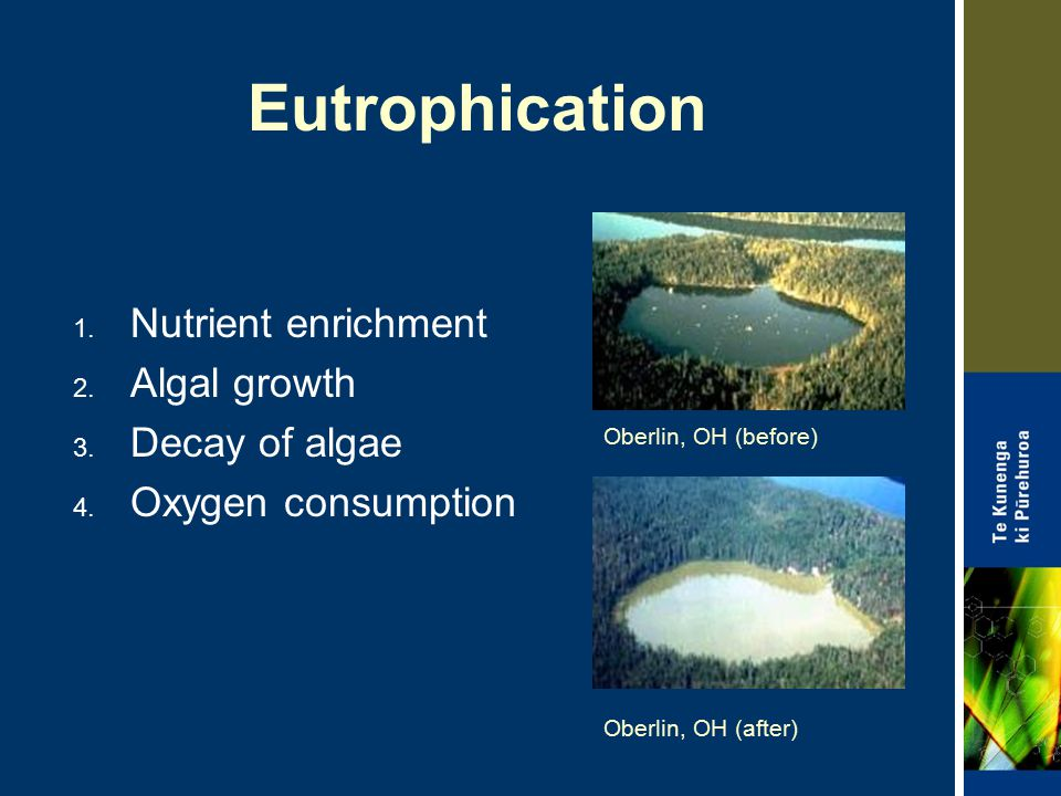 Eutrophication Nutrient enrichment Algal growth Decay of algae
