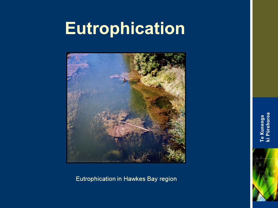 Eutrophication in Hawkes Bay region
