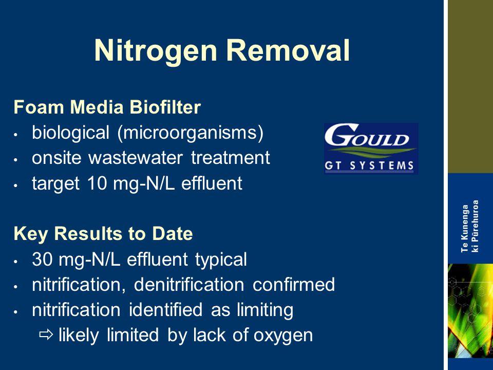 Nitrogen Removal Foam Media Biofilter biological (microorganisms)