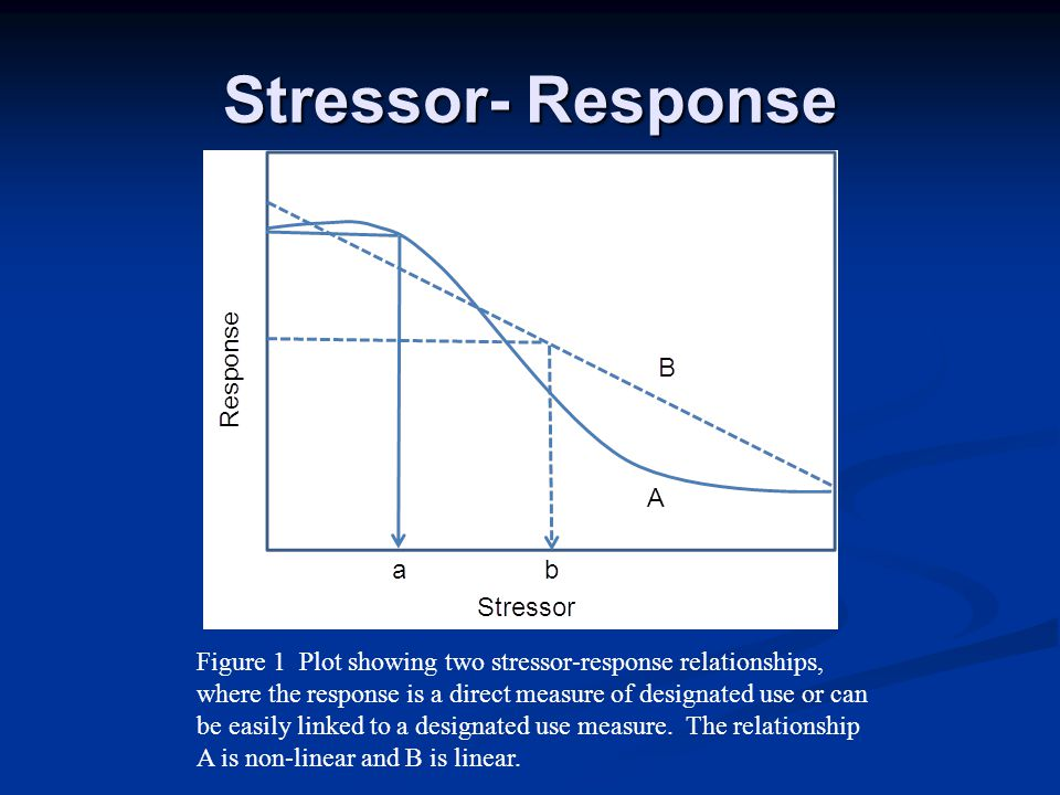 Stressor- Response