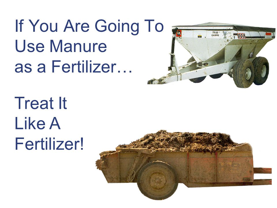 If You Are Going To Use Manure as a Fertilizer…
