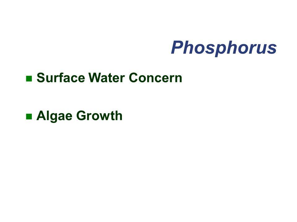 Phosphorus Surface Water Concern Algae Growth