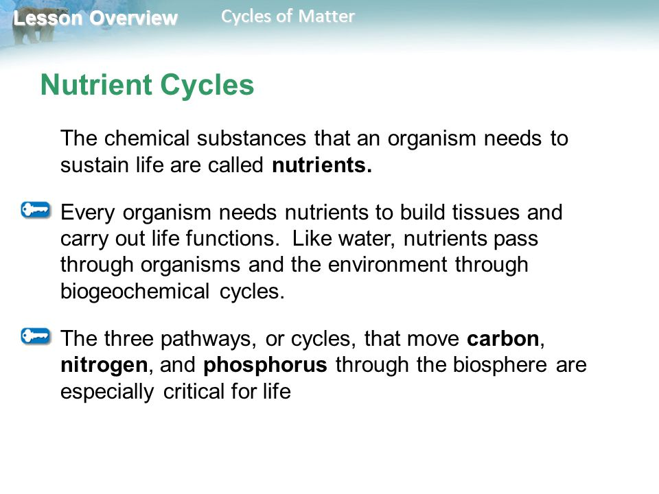 Nutrient Cycles The chemical substances that an organism needs to sustain life are called nutrients.