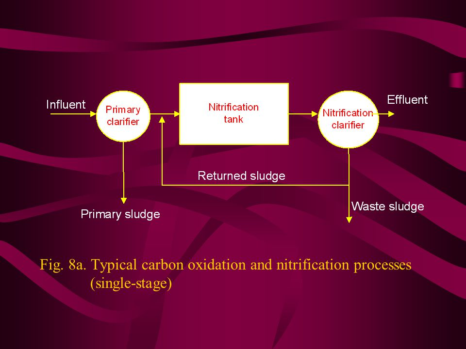 Fig. 8a. Typical carbon oxidation and nitrification processes