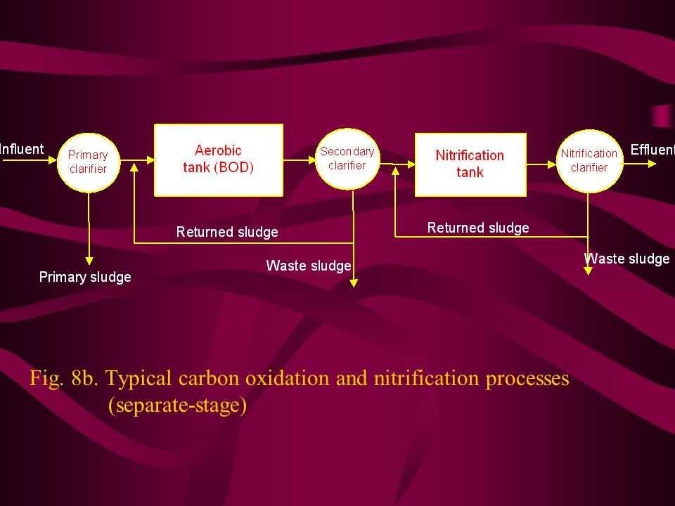 Fig. 8b. Typical carbon oxidation and nitrification processes