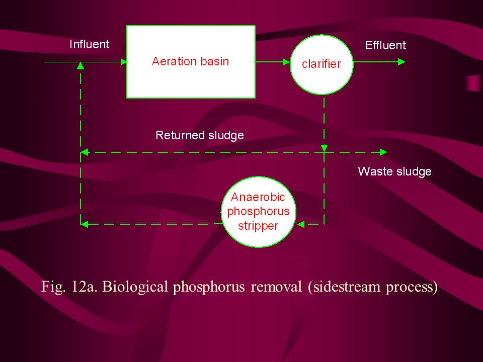 Fig. 12a. Biological phosphorus removal (sidestream process)