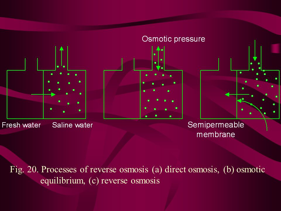 Fig. 20. Processes of reverse osmosis (a) direct osmosis, (b) osmotic