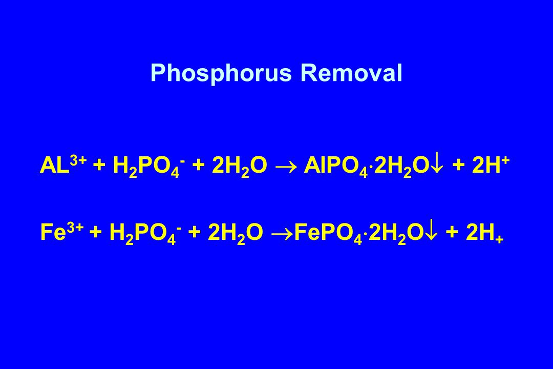 Phosphorus Removal AL3+ + H2PO4- + 2H2O  AlPO42H2O + 2H+