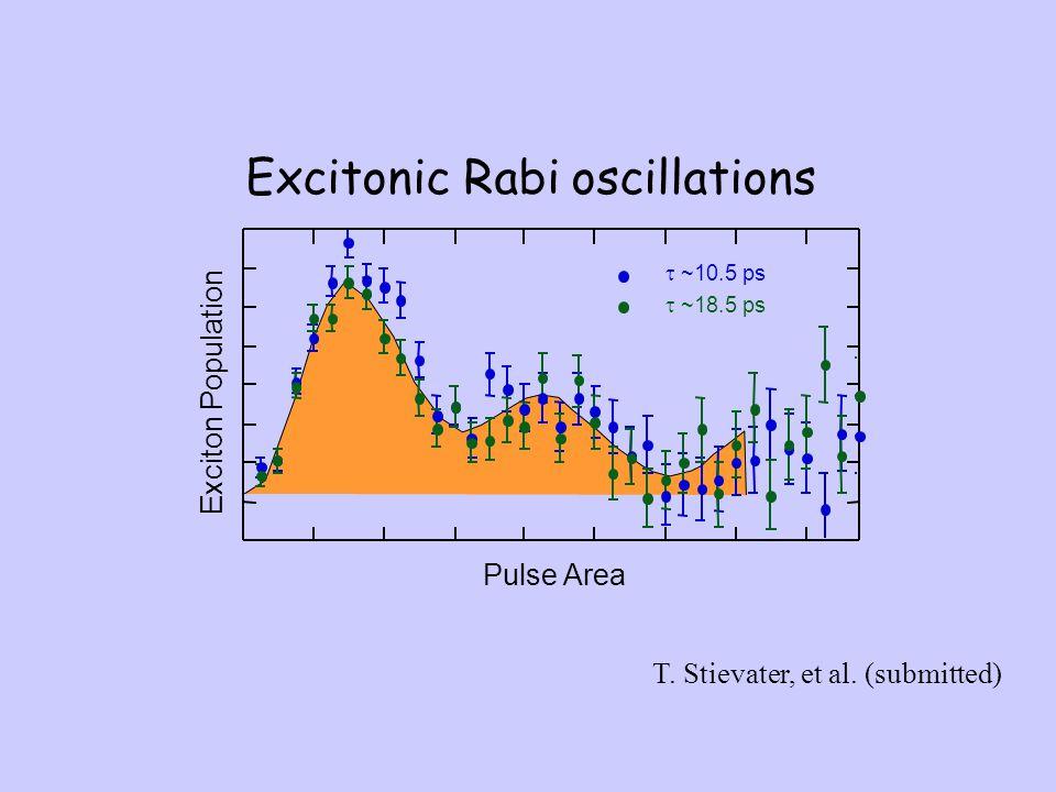 Excitonic Rabi oscillations