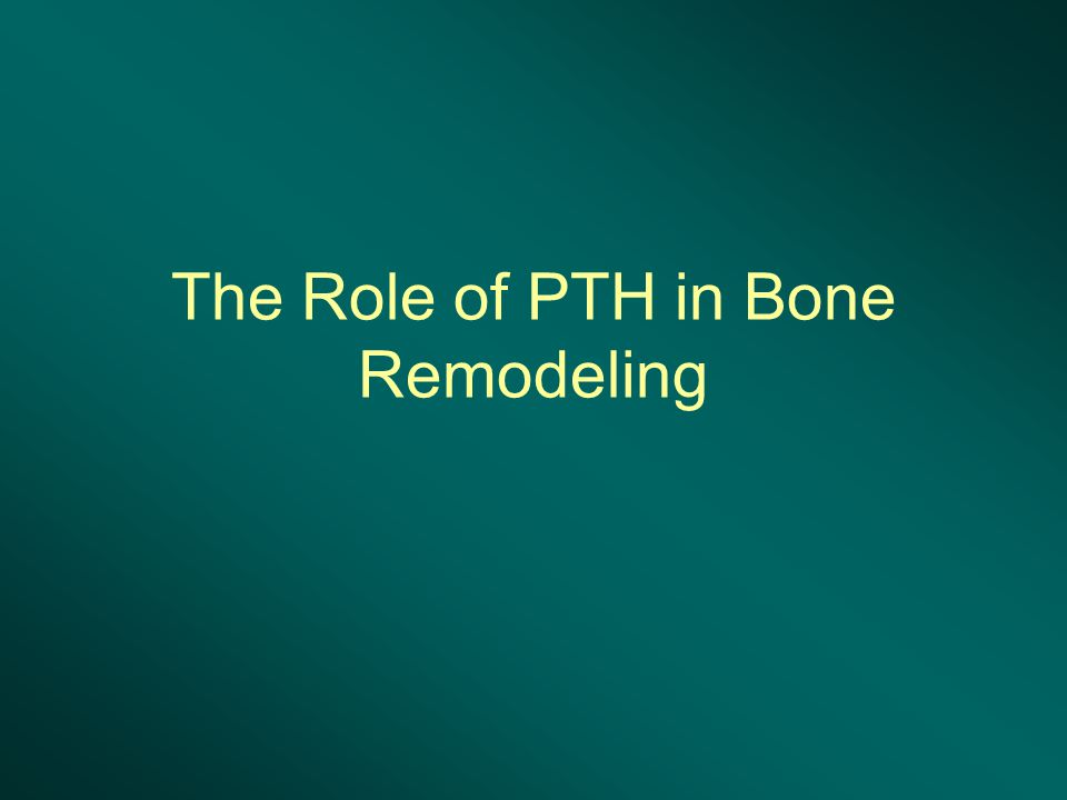 The Role of PTH in Bone Remodeling