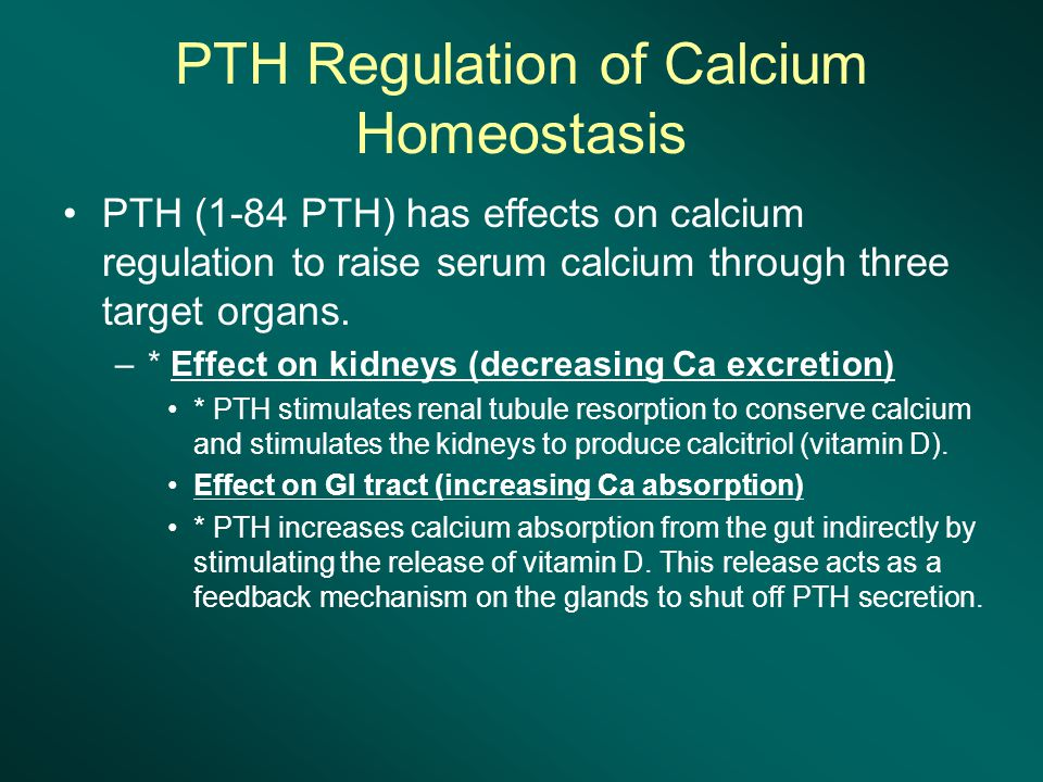 PTH Regulation of Calcium Homeostasis
