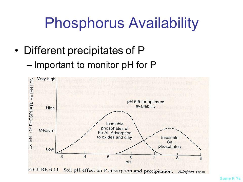 Phosphorus Availability