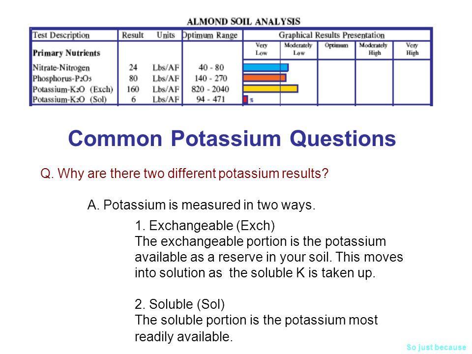 Common Potassium Questions