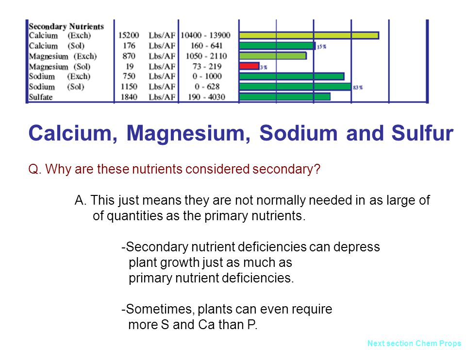 relationship between sodium and magnesium