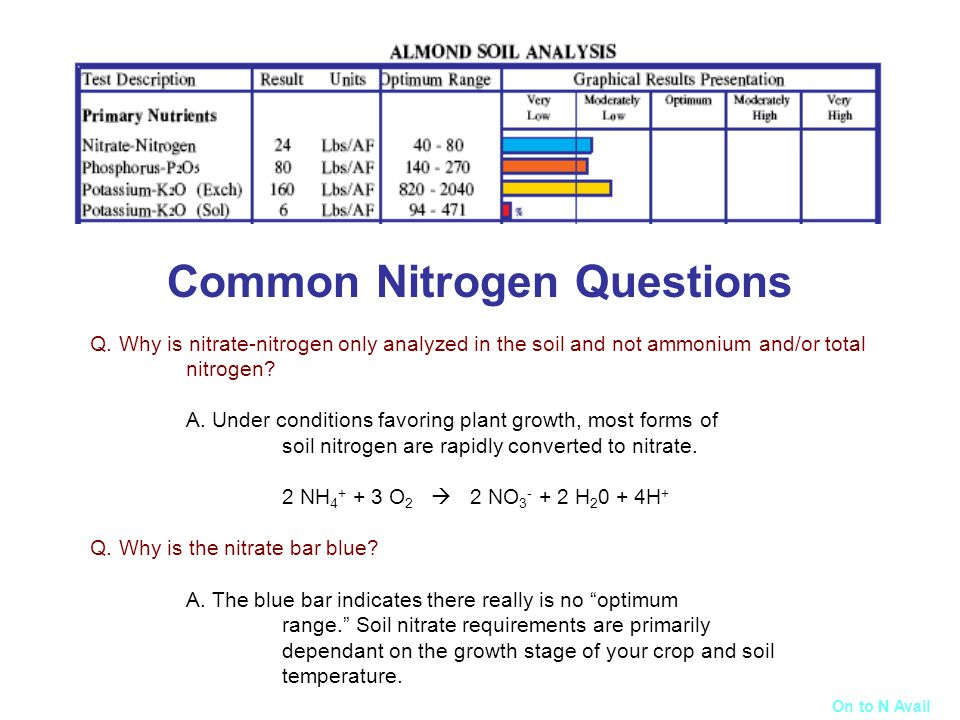 Common Nitrogen Questions