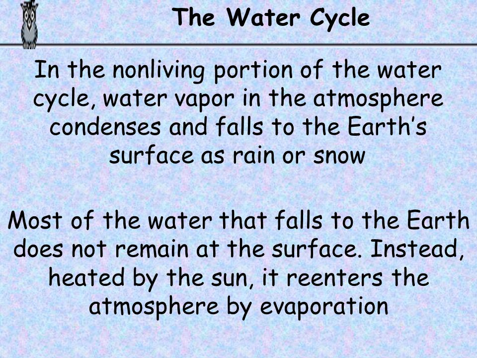 The Water Cycle In the nonliving portion of the water cycle, water vapor in the atmosphere condenses and falls to the Earth's surface as rain or snow.