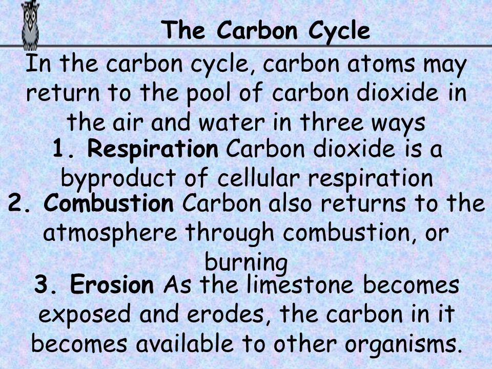 1. Respiration Carbon dioxide is a byproduct of cellular respiration
