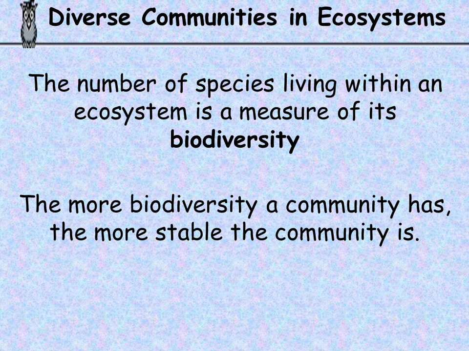Diverse Communities in Ecosystems