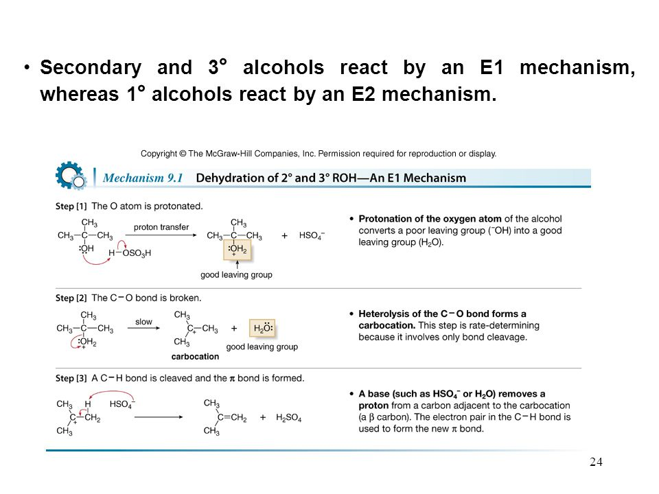 Secondary and 3° alcohols react by an E1 mechanism, whereas 1° alcohols react by an E2 mechanism.