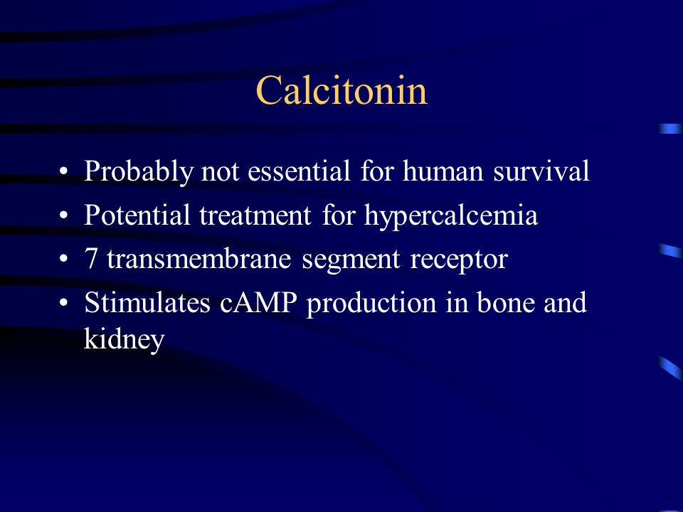 Calcitonin Probably not essential for human survival
