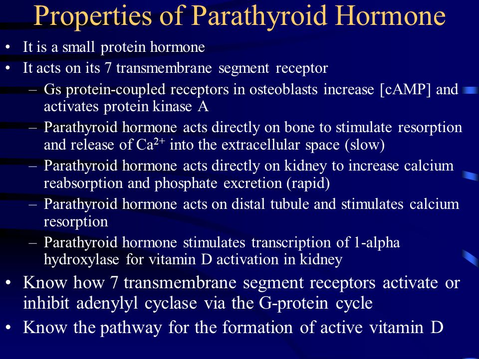 Properties of Parathyroid Hormone