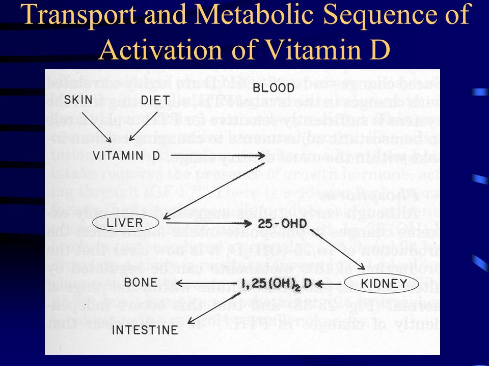 Transport and Metabolic Sequence of Activation of Vitamin D