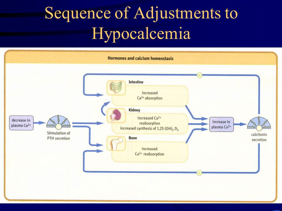 Sequence of Adjustments to Hypocalcemia