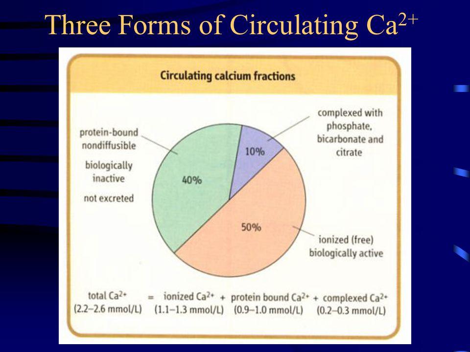Three Forms of Circulating Ca2+