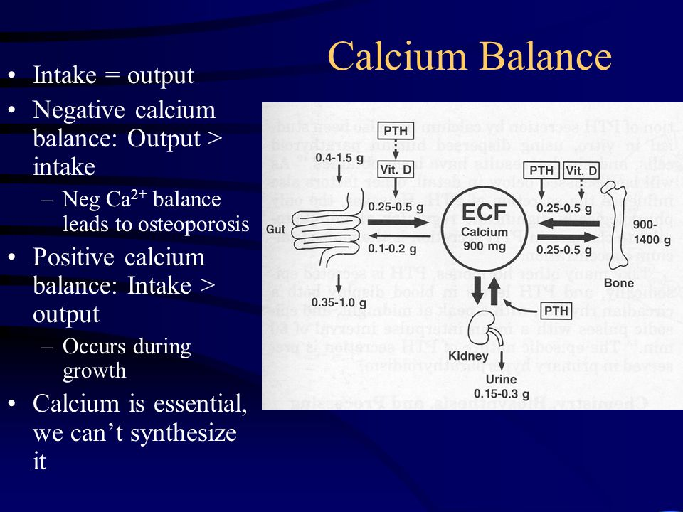 Calcium Balance Intake = output