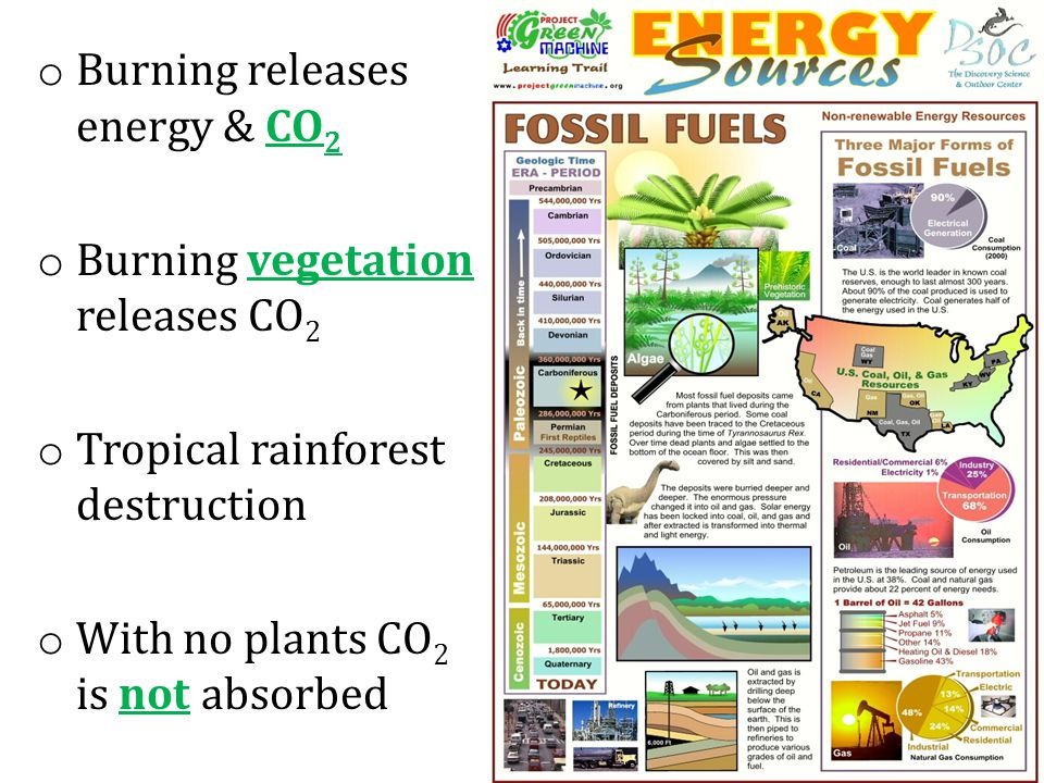 Burning releases energy & CO2