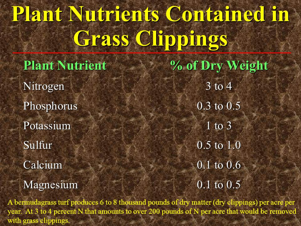 Plant Nutrients Contained in Grass Clippings