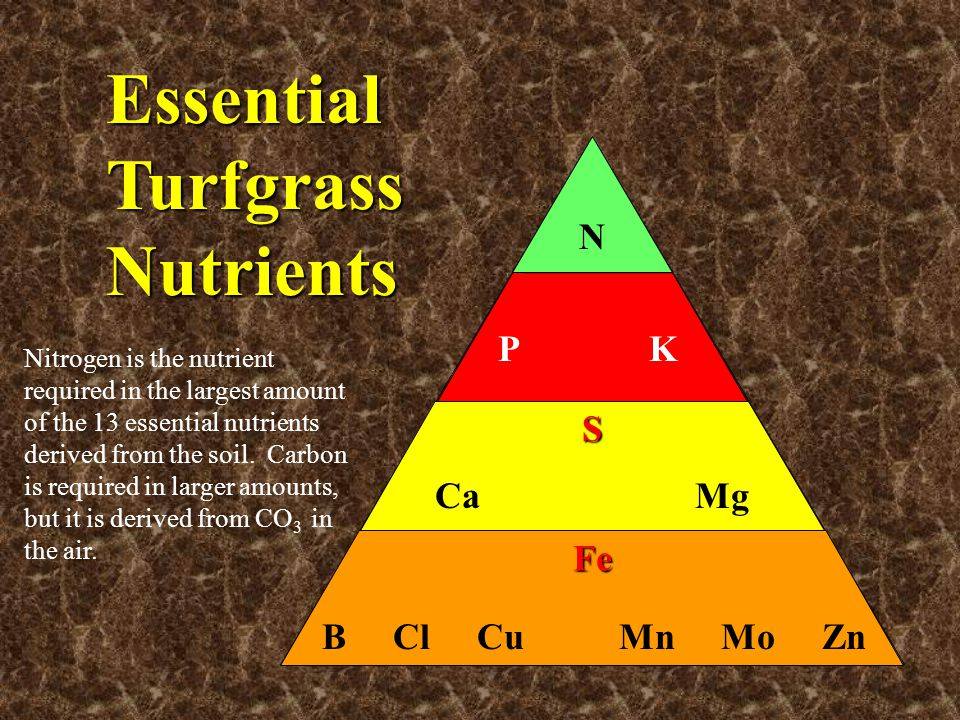 Essential Turfgrass Nutrients