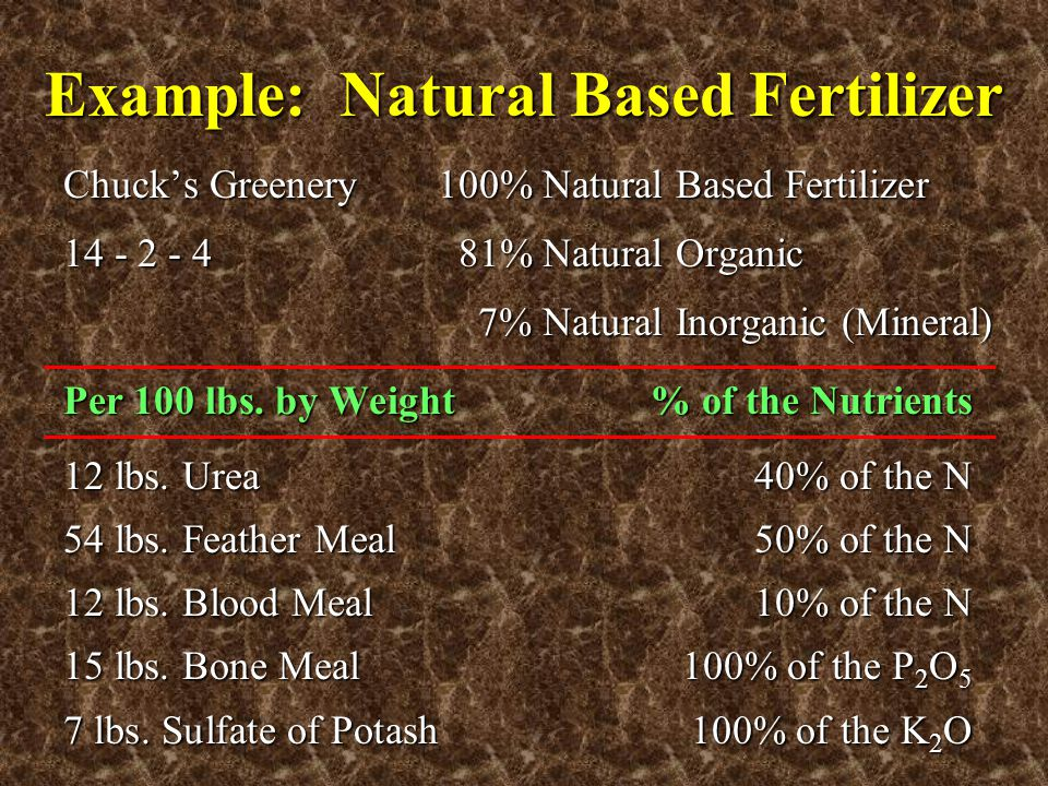 Example: Natural Based Fertilizer